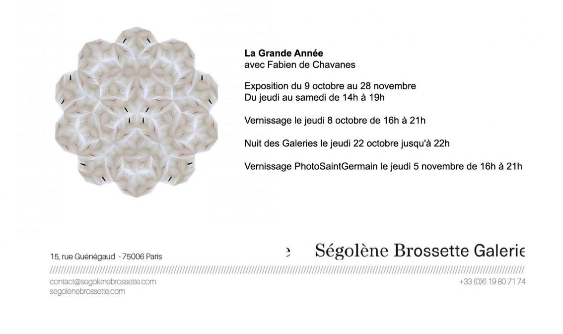 http://fabiendechavanes.com/files/gimgs/th-36_flyer.jpg