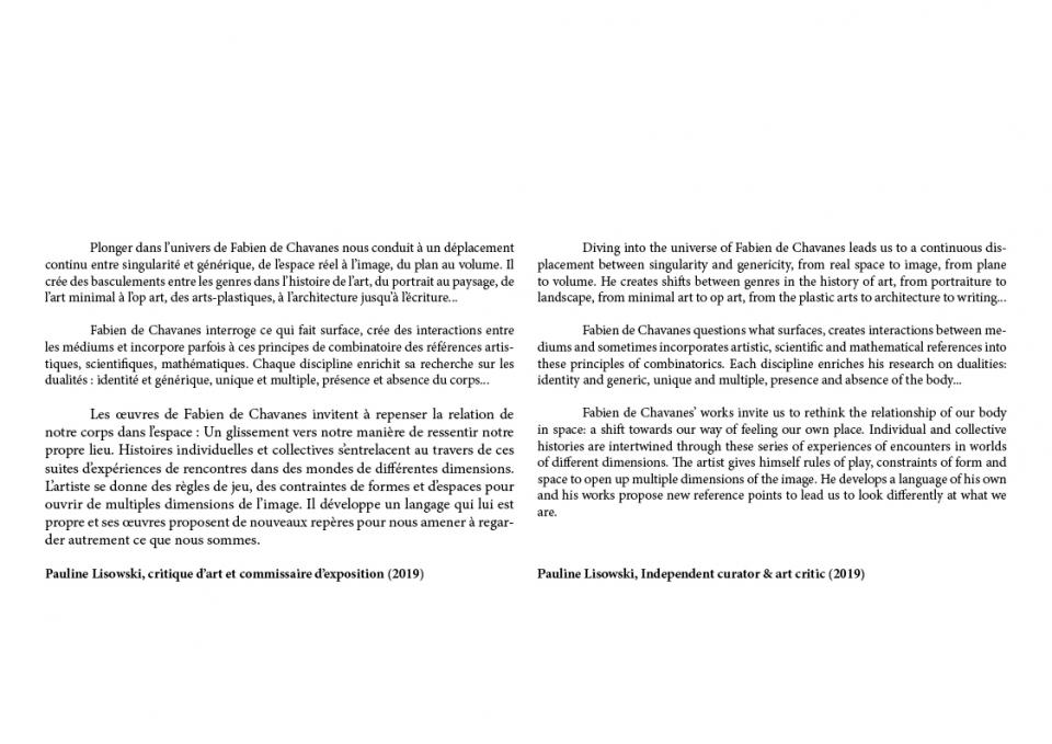 http://fabiendechavanes.com/files/gimgs/th-191_fabien_de_chavanes_critical texts59.jpg