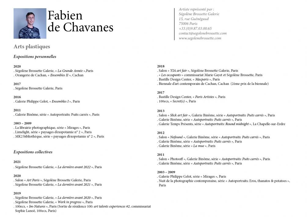 http://fabiendechavanes.com/files/gimgs/th-34_cv.jpg