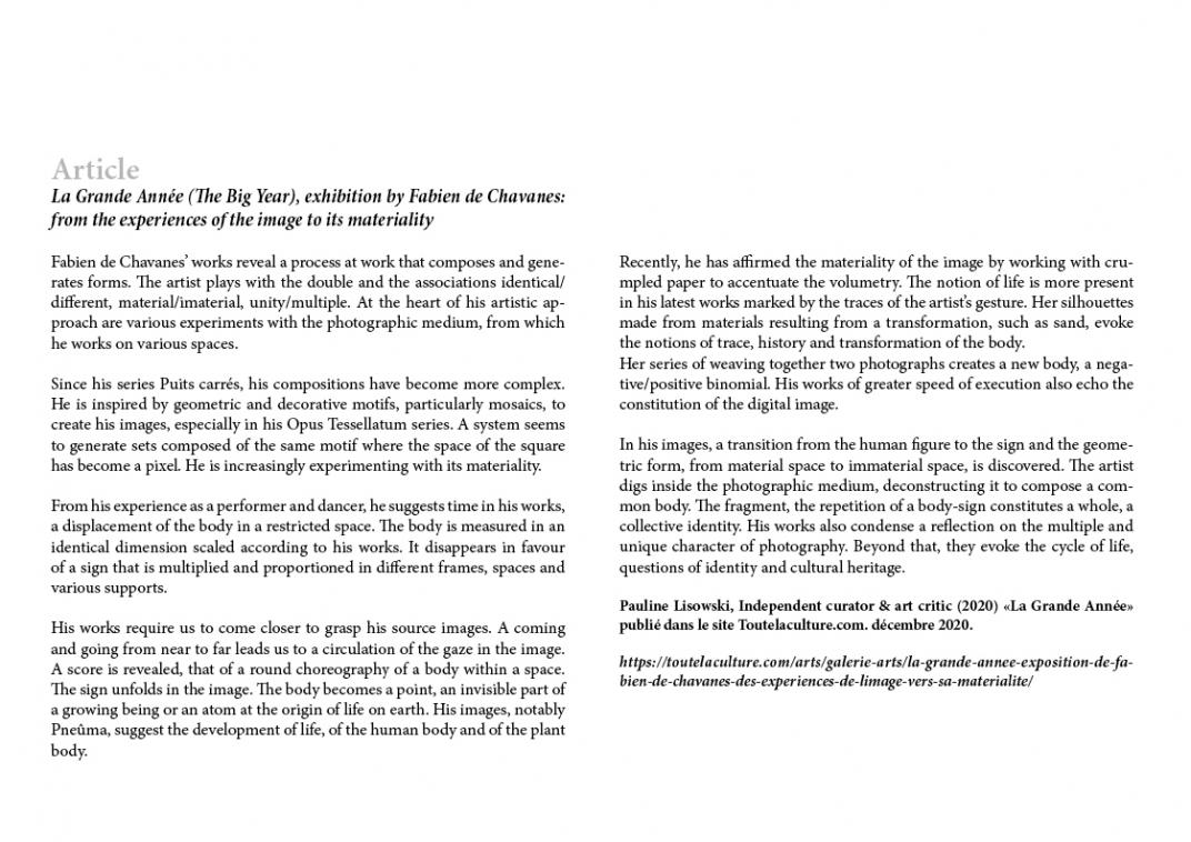 http://fabiendechavanes.com/files/gimgs/th-192_fabien_de_chavanes_press review63.jpg