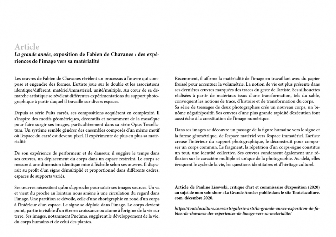 http://fabiendechavanes.com/files/gimgs/th-192_fabien_de_chavanes_press review62.jpg